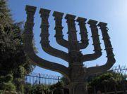 moving_company_israel