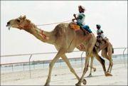 move_to_saudi-arabia